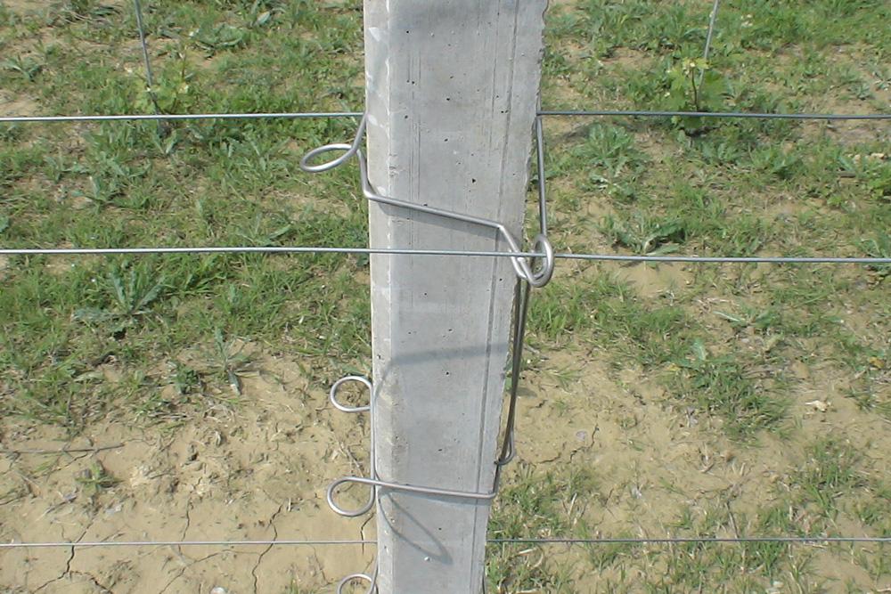 prolunga-pali-cemento-Mollificio-Astigiano-Belveglio-Asti